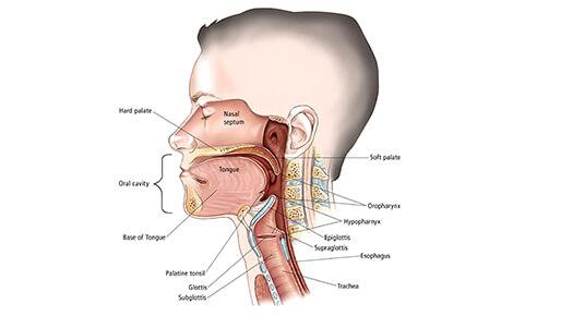 Head and Neck Reconstruction - Dr Abizer Kapadia